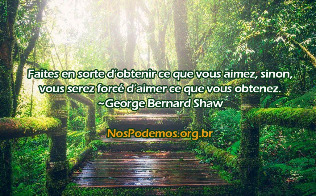 Faites en sorte d'obtenir ce que vous aimez, sinon, vous serez forcé d'aimer ce que vous obtenez. ~George Bernard Shaw