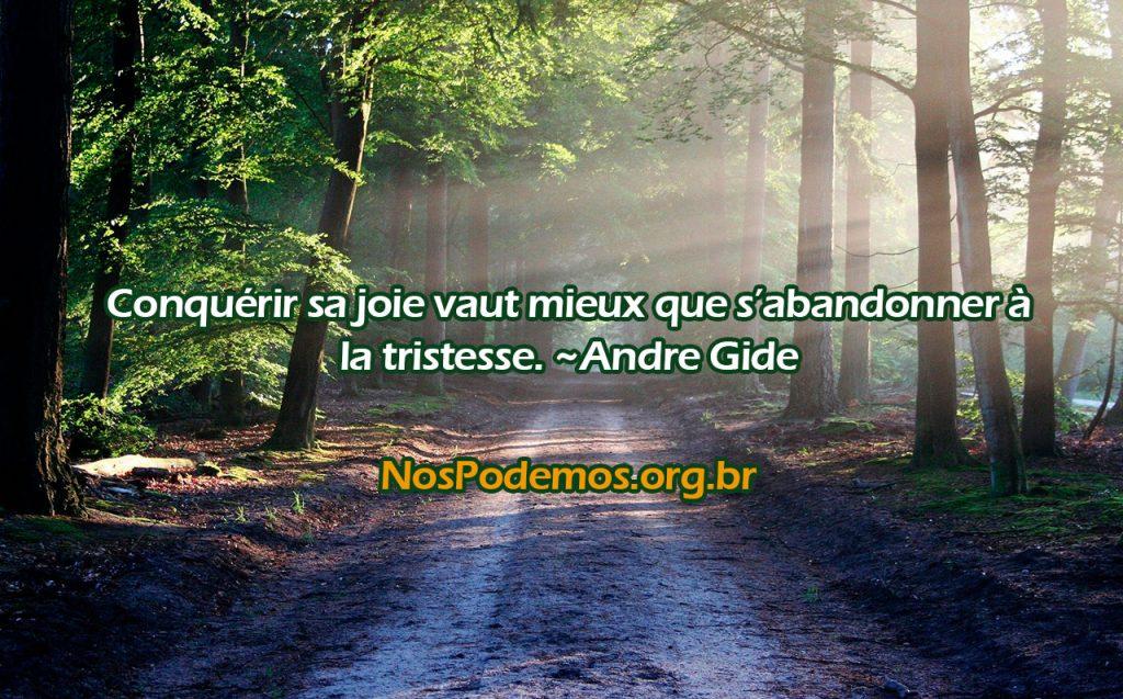 Conquérir sa joie vaut mieux que s'abandonner à la tristesse. ~Andre Gide