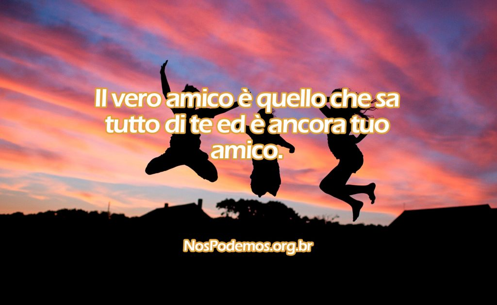 Il vero amico è quello che sa tutto di te ed è ancora tuo amico.