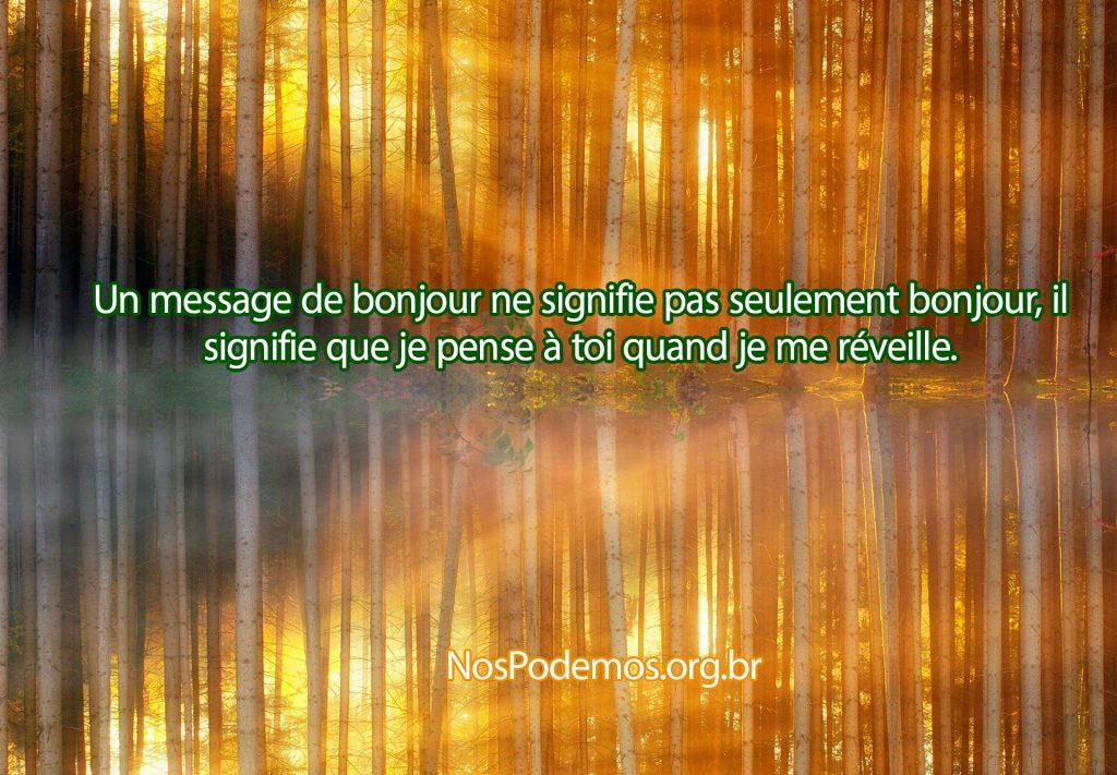 Un message de bonjour ne signifie pas seulement bonjour, il signifie que je pense à toi quand je me réveille.