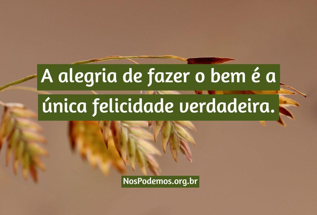 A alegria de fazer o bem é a única felicidade verdadeira.