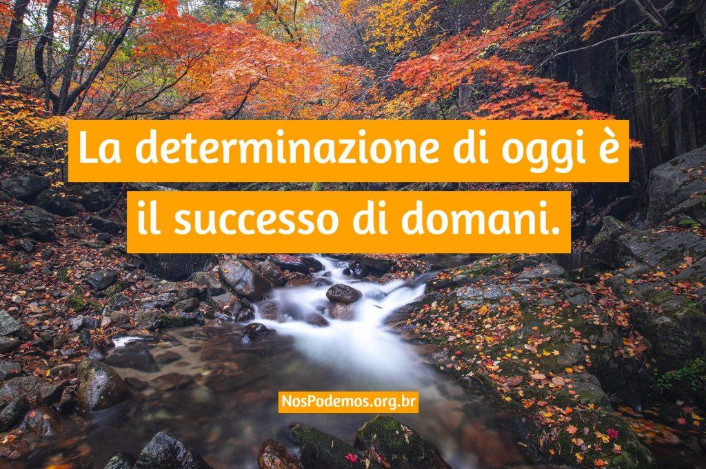 La determinazione di oggi è il successo di domani.