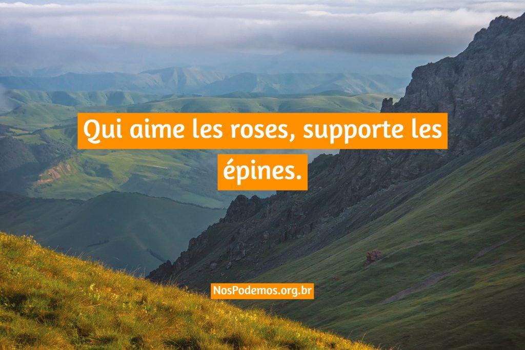 Qui aime les roses, supporte les épines.