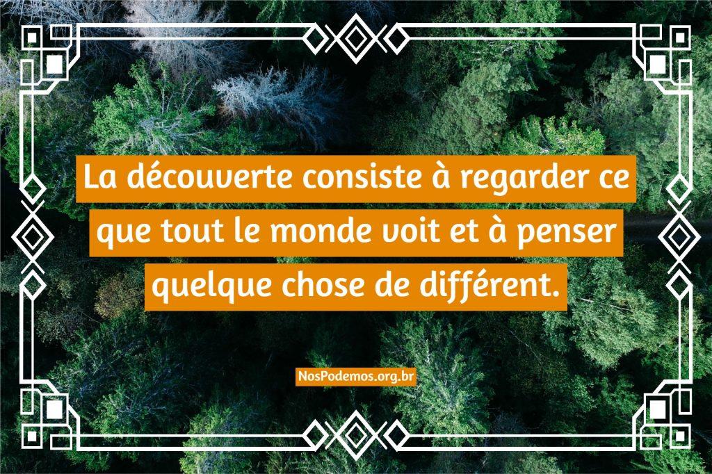 La découverte consiste à regarder ce que tout le monde voit et à penser quelque chose de différent.