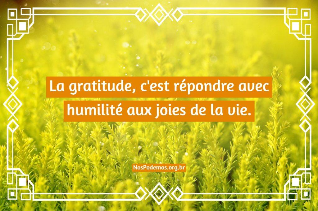 La gratitude, c'est répondre avec humilité aux joies de la vie.