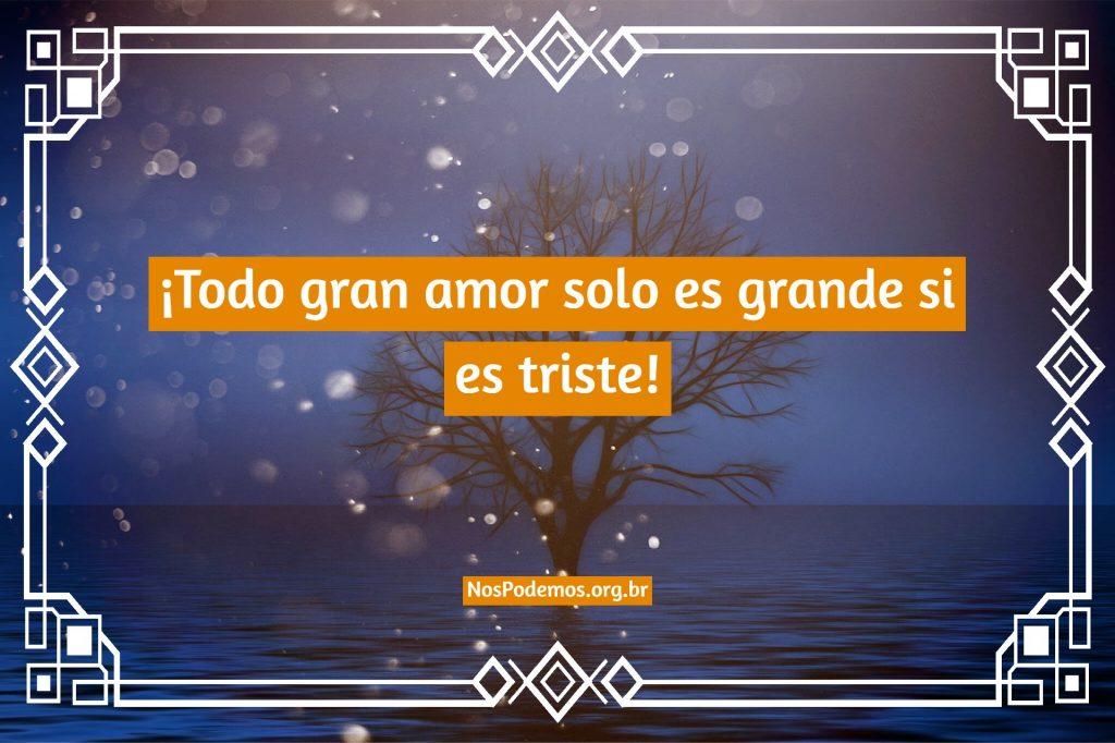 ¡Todo gran amor solo es grande si es triste!