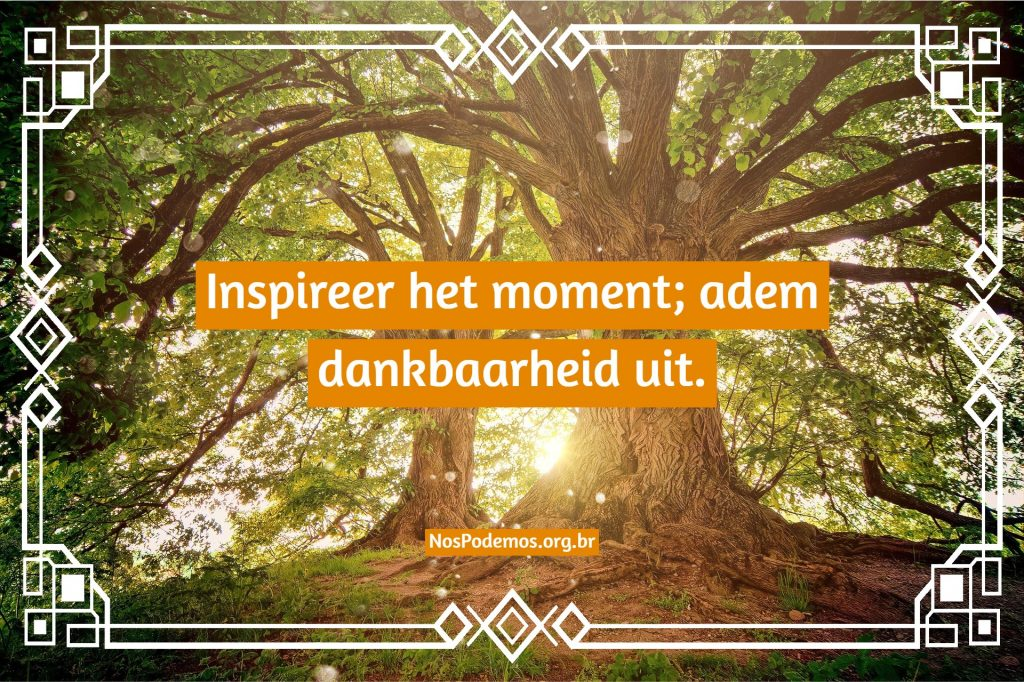 Inspireer het moment; adem dankbaarheid uit.