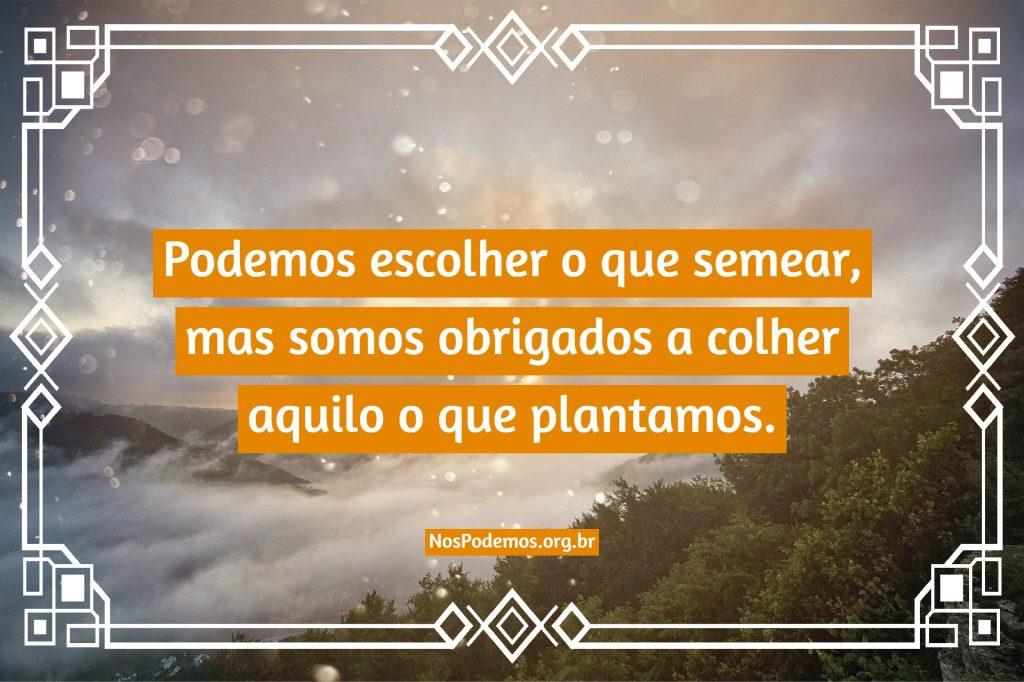 Podemos escolher o que semear, mas somos obrigados a colher aquilo o que plantamos.